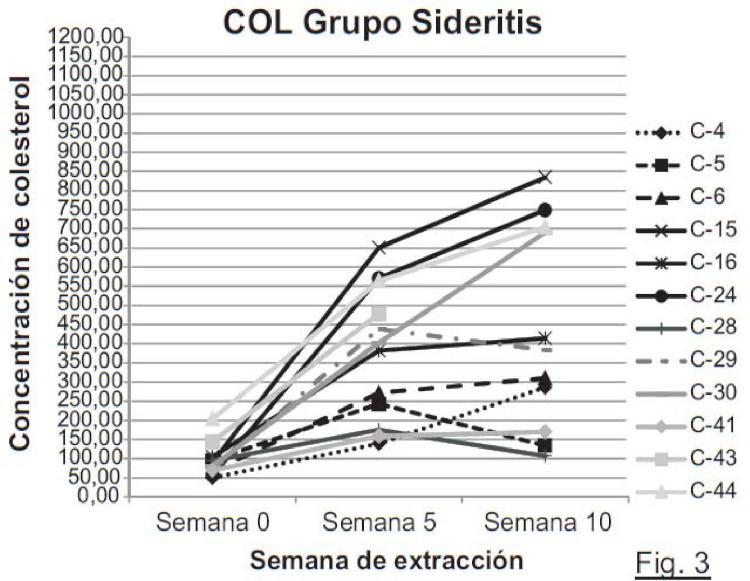 Uso de material de la planta Sideritis hyssopifolia para elaborar un producto alimenticio y un medicamento para la prevención y/o el tratamiento de enfermedades cardiovasculares.