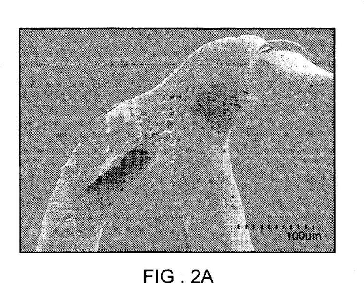 Mezclas de polímeros para una matriz de stent que suministra fármaco con una estabilidad térmica mejorada.