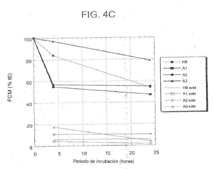 Anticuerpos anti-5T4 y usos de los mismos.