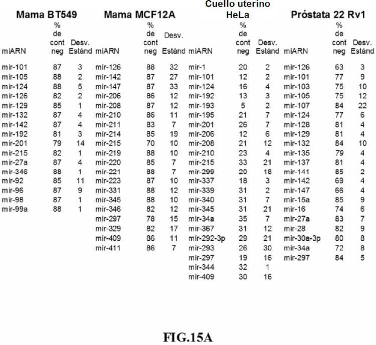 Procedimientos y composiciones que implican miARN y moléculas inhibidoras de miARN.