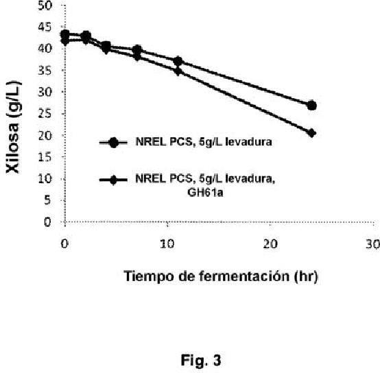 Proceso de fermentación con polipéptidos GH61.