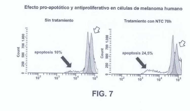 Composición de nanofilamentos para el tratamiento de tumores.