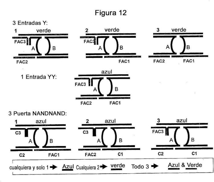 Interruptores moleculares y métodos para su uso.
