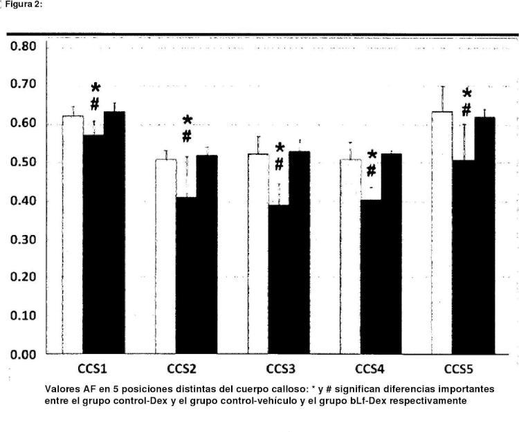 Lactoferrina y sustancia blanca.