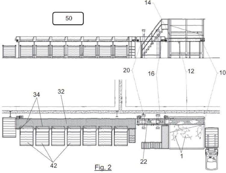 Sistema y procedimiento automatizado de clasificación de atunes congelados por especie.