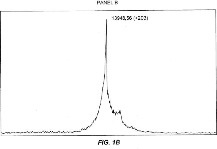 Glicosilación de péptidos a través de secuencias de glicosilación con unión en O.