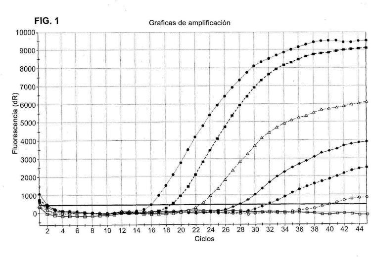 Rotavirus aviar de grupo D.