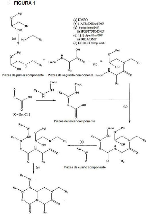 Nuevos compuestos de miméticos de giro inverso y el uso de los mismos (1).