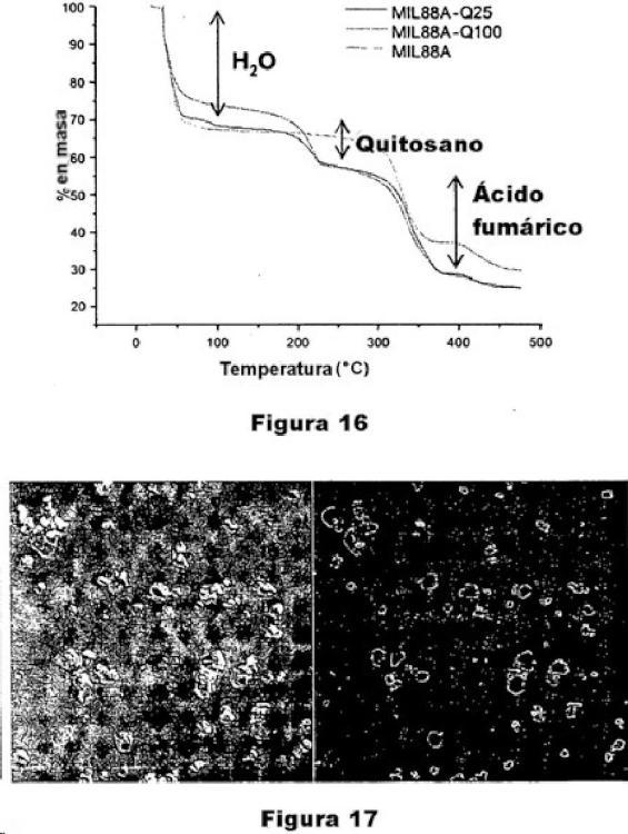 Ilustración 11 de la Galería de ilustraciones de Sólido híbrido orgánico-inorgánico de superficie modificada