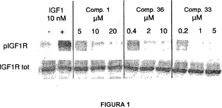 Derivados de indazol como inhibidores de la cinasa para el tratamiento del cáncer.