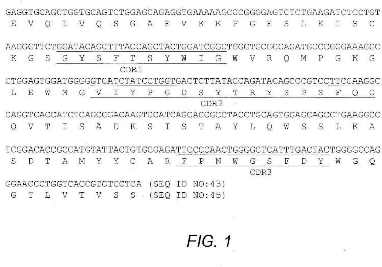 Antagonistas de anticuerpos de alta afinidad del receptor alfa 1 de interleucina.