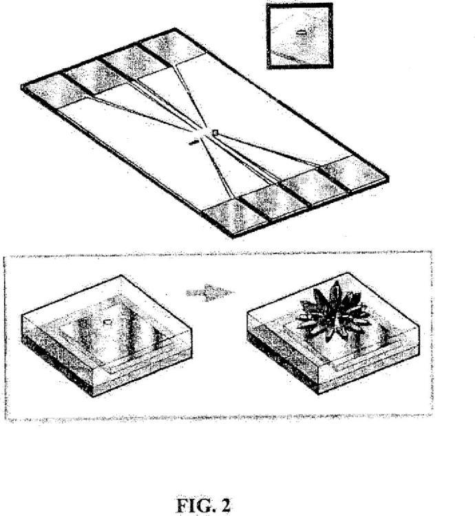 Microelectrodos nanoestructurados y dispositivos de biodetección que los incorporan.