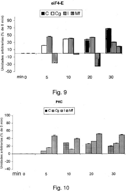 Conglutina gamma como medicamento y suplemento dietético.