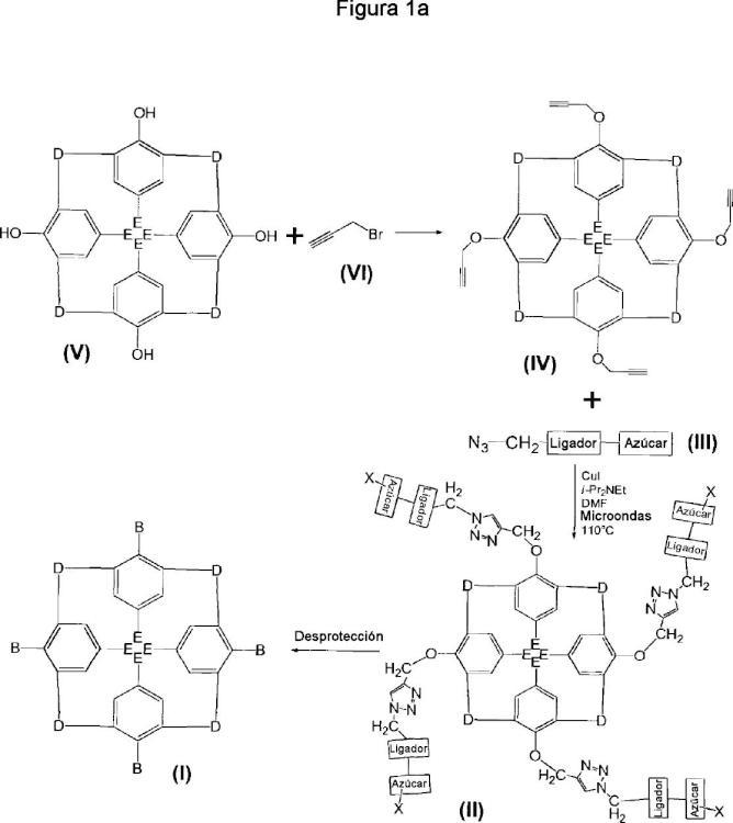 Compuestos glicomiméticos como agentes antiinfecciosos frente a lectinas patógenas.