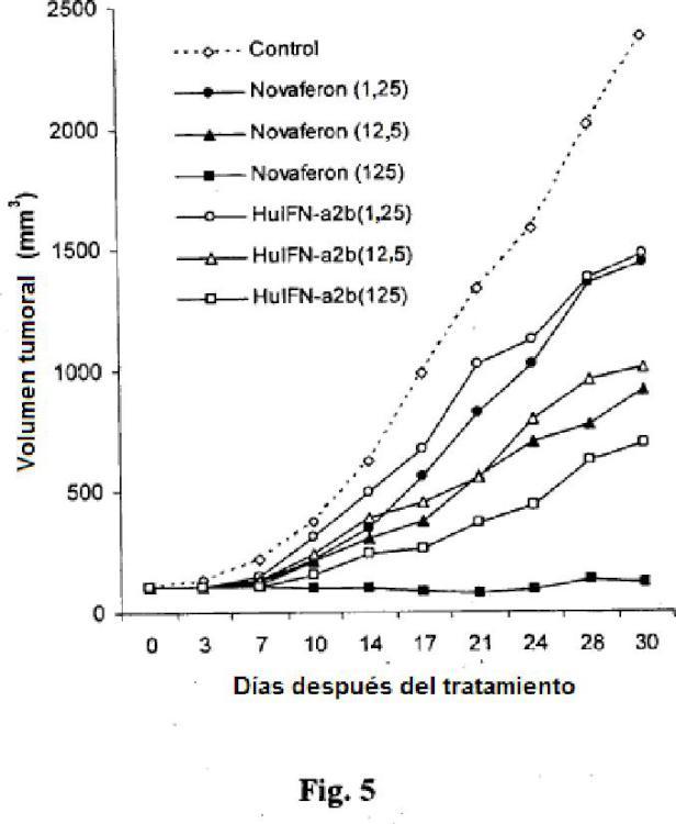 Proteínas de tipo interferón humano recombinantes.