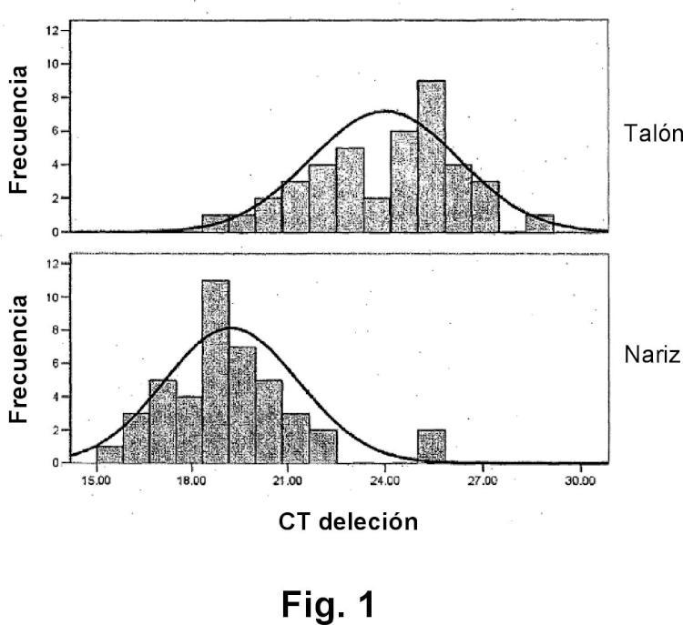 Procedimiento para someter a ensayo variantes del MC1R y marcadores mitocondriales en muestras de piel.