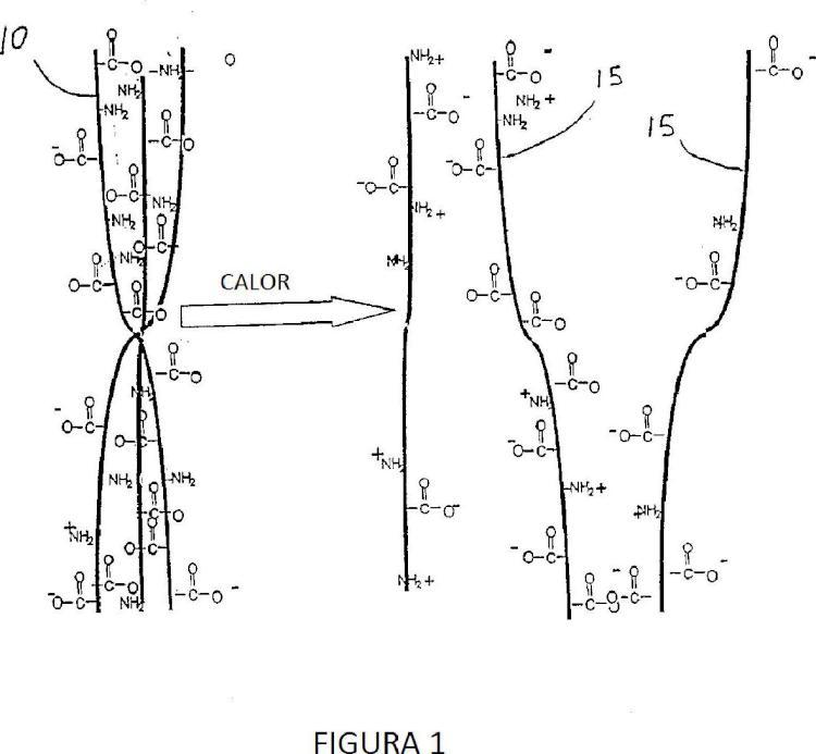 Composiciones de hidrogel bioactivo para la regeneración del tejido conjuntivo.
