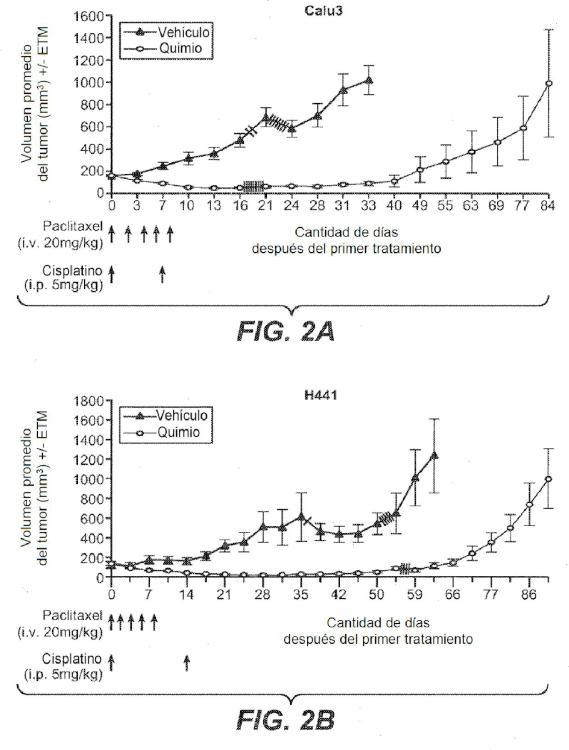 Antagonistas de neurregulina y uso de los mismos en el tratamiento del cáncer.