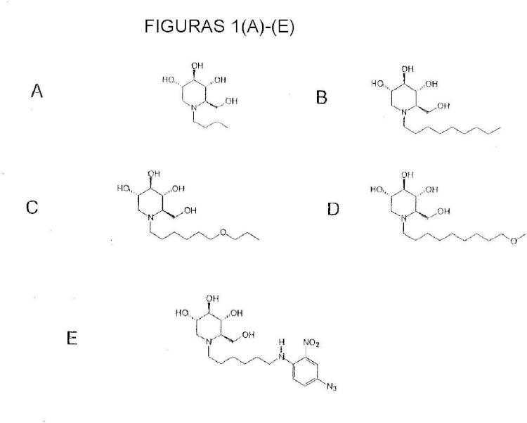 Iminoazúcares para su uso en el tratamiento de enfermedades por bunyavirus y togavirus.