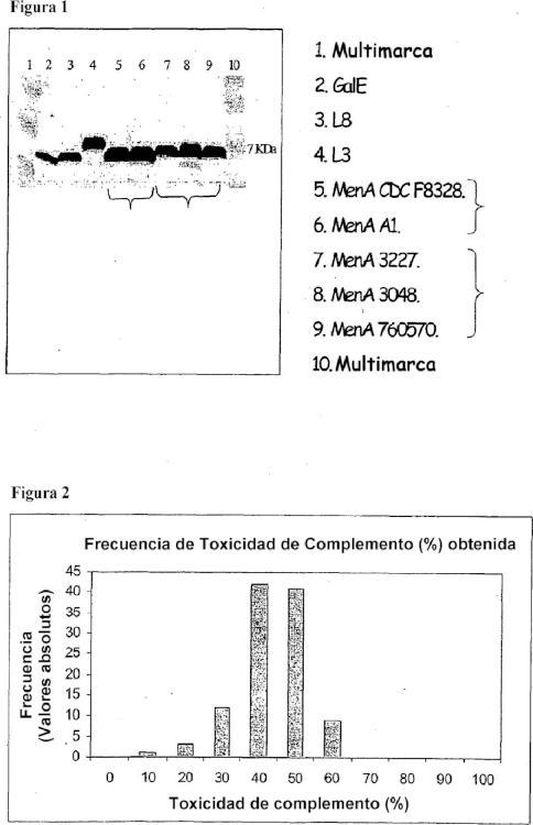 Ensayo bactericida del suero para antisueros específicos de N. meningitidis.