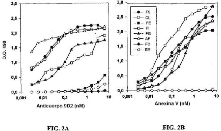 Anticuerpos seleccionados que se unen a aminofosfolípidos y su uso en el tratamiento del cáncer.