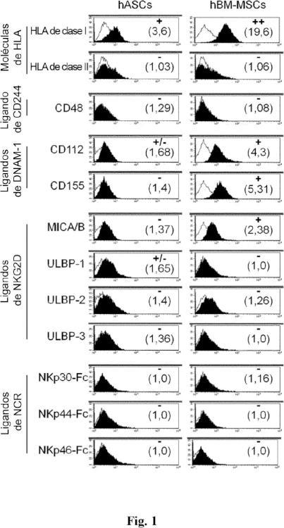 Poblaciones celulares que tienen actividad immunoreguladora, método para el aislamiento y usos.