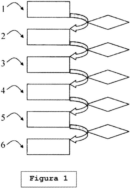 Procedimiento de protección de la ejecución de un código informático mediante redundancia dinámica.
