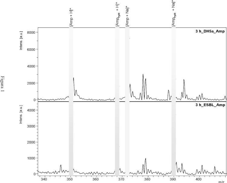 Espectrometria de masas de resistencias por betalactamasas.