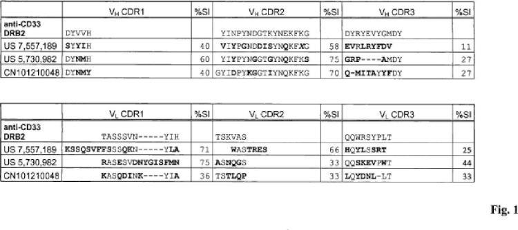 Anticuerpos anti-CD33 y su aplicación para el inmunotargeting en el tratamiento de enfermedades asociadas a CD33.