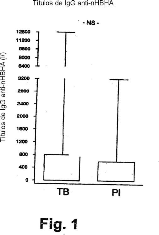 Detección de la tuberculosis e infección por Mycobacterium tuberculosis utilizando HBHA.