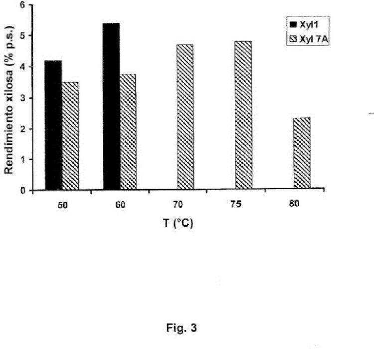 Xilanasa termoestable para la hidrólisis selectiva de polisacáridos que contienen pentosa.