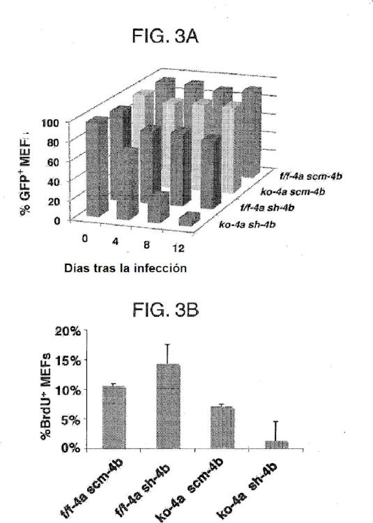 Sustancias y composiciones para potenciar la reparación de ADN y procedimientos de uso.