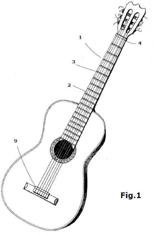 Diapasón de guitarra e instrumentos similares.
