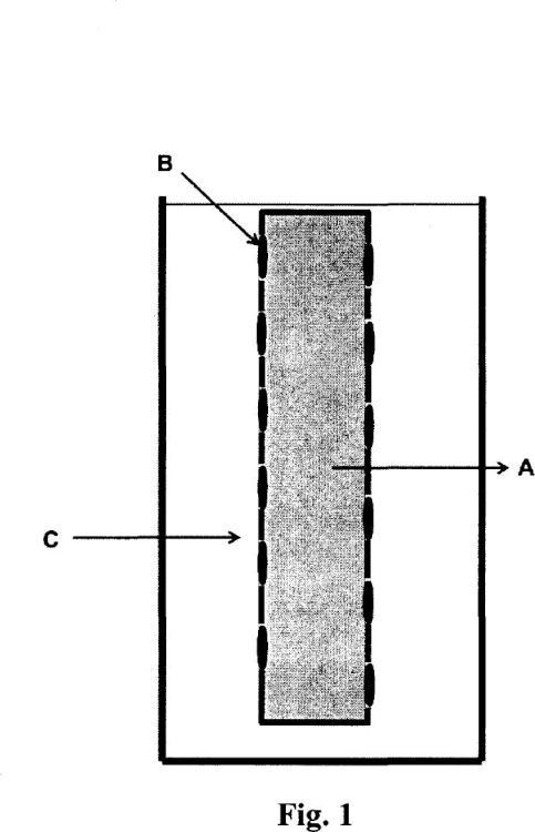 Barras trifásicas de microextracción en fase líquida termoselladas para la preconcentración de especies metálicas.