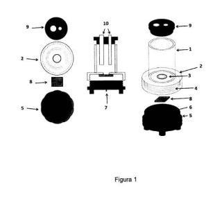 Celda electroquimica para la realizacion de ensayos de corrosion sobre superficies planas.