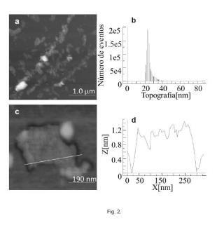 Método de obtención de oxido de material pregrafítico, oxido de grafeno o grafeno a partir de materiales pregrafíticos y productos obtenidos por dicho método.