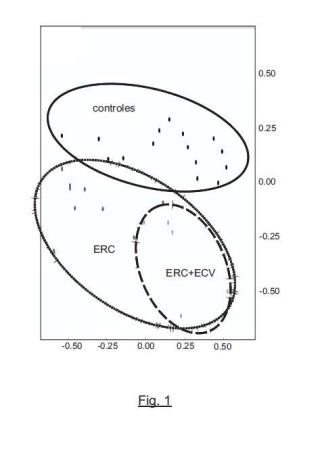 Procedimiento de diagnóstico y pronóstico de la enfermedad renal crónica en un sujeto humano.