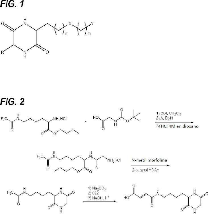 Análogos sustituidos de dicetopiperazina para su uso como agentes para la administración de fármacos.