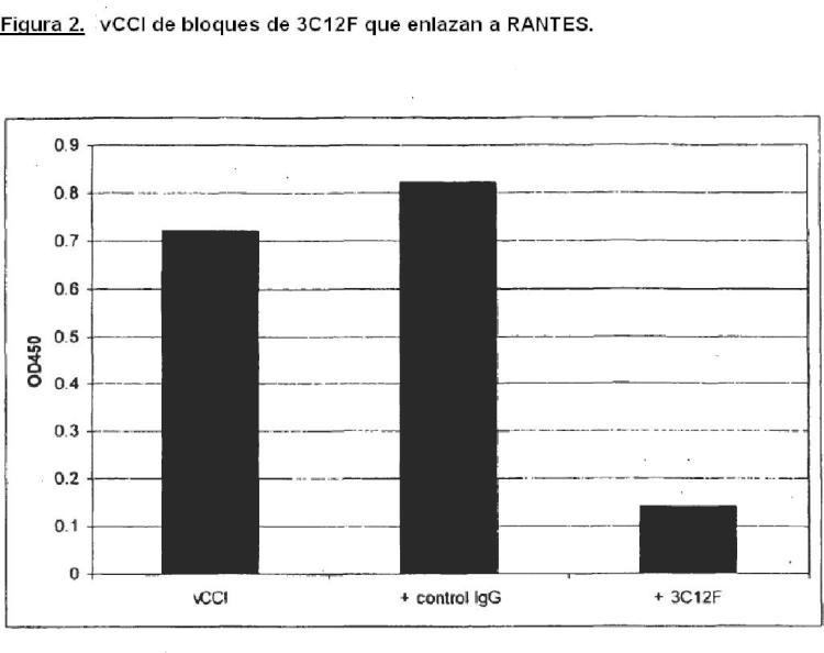 Anticuerpos de antiquina que se enlazan a múltiples quimioquinas CC.