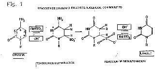 Método mejorado para el tratamiento de bisulfito.