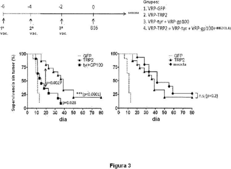Partículas de replicón de alfavirus que expresan TRP2.