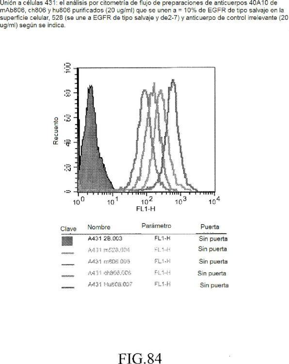 Proteínas de unión específica y uso de las mismas.
