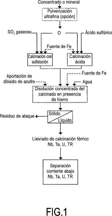 Disolución y recuperación de al menos un elemento Nb o Ta y de al menos otro elemento u o elementos de tierras raras a partir de minerales y concentrados.