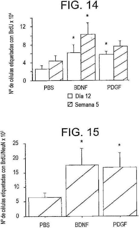 VEGF para utilizar en el tratamiento de trastornos del sistema nervioso central.