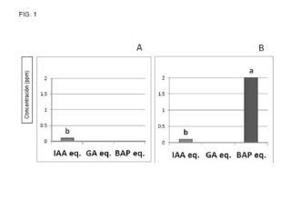 Composición ácida a base de leonardita y aminoácidos.