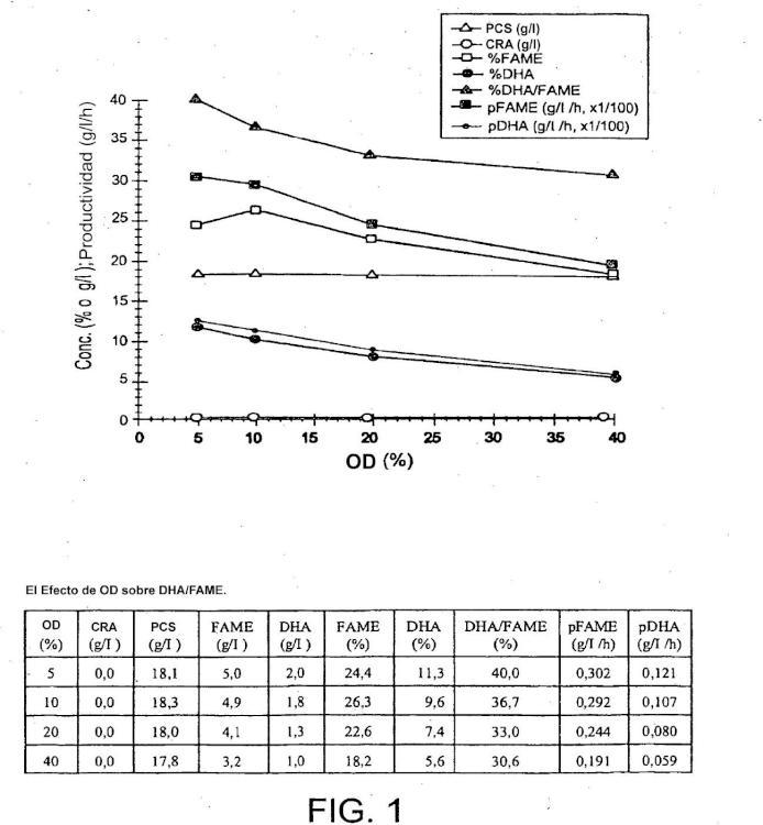 Producción mejorada de lípidos que contienen ácidos grasos polienoicos por cultivos de alta densidad de microbios eucariotas en fermentadores.