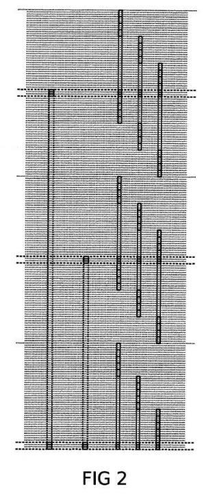 Sistema optimizado de transporte en ascensor en edificios de gran altura.