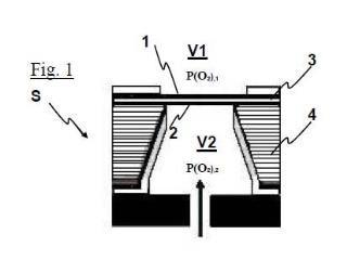 Sensor electroquímico de estado sólido y procedimiento para su fabricación.
