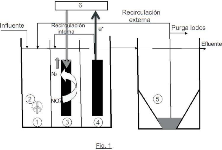 Procedimiento para la eliminación bacteriana de nitrato en aguas residuales y sistema biológico electrogénico.