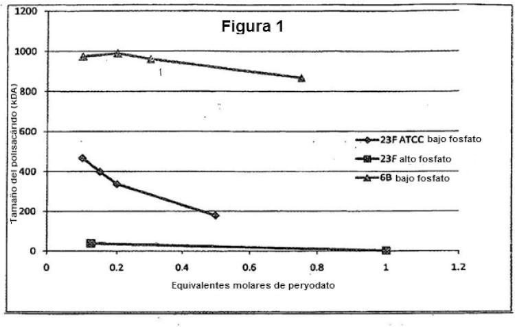 Procedimiento de conjugación de polisacáridos bacterianos con proteínas transportadoras.